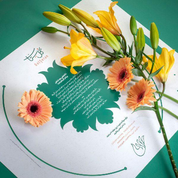 باکس گل یا پکیج حمل گل برای هدیه در بسته بندی خاص و لاکچریدن در پاکت اختصاصی گُلسِتان