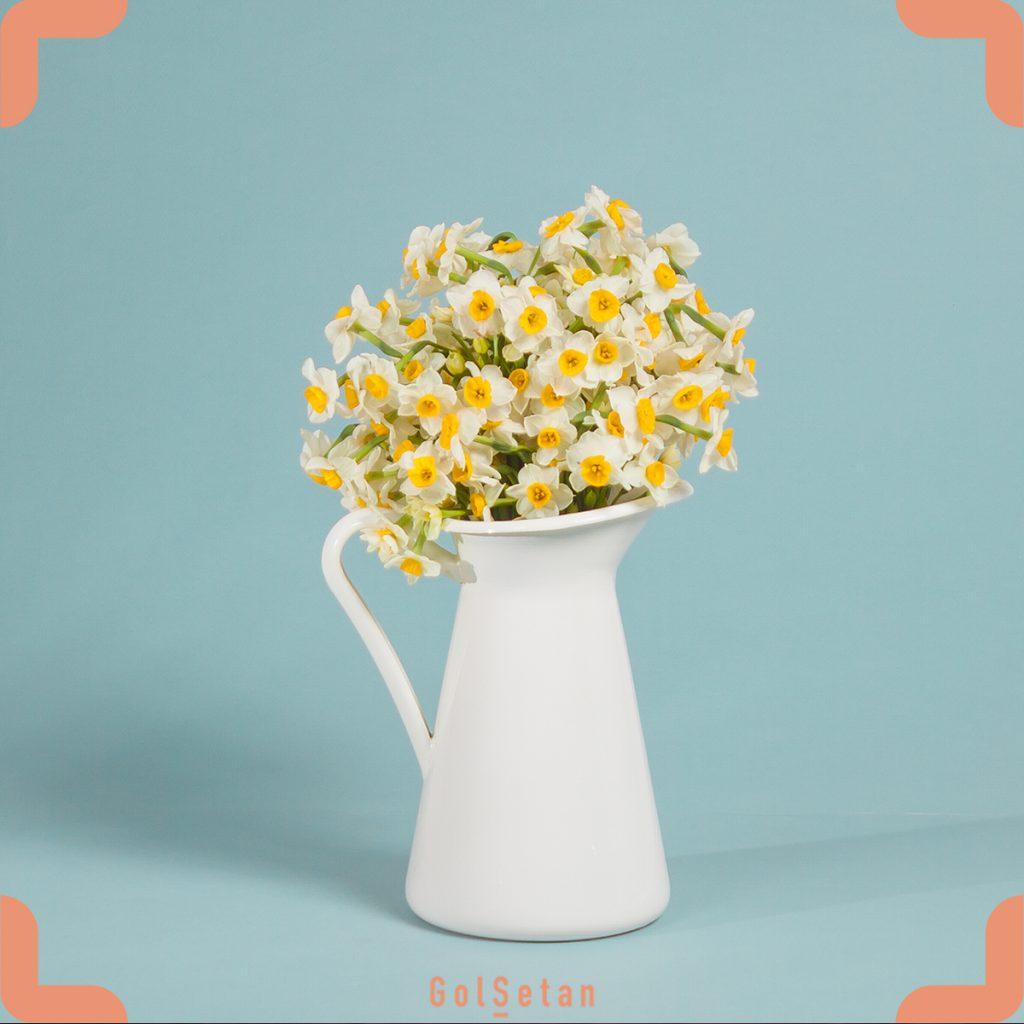 دسته گل نرگس قرار گرفته در گلدان سفید ایکیا