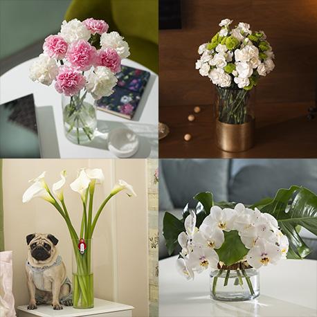 اشتراک گل های متنوع