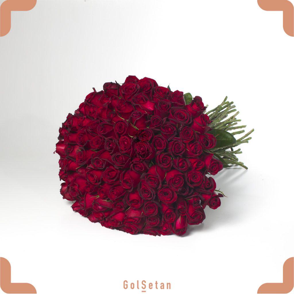 دسته گل رز هلندی 100 شاخه