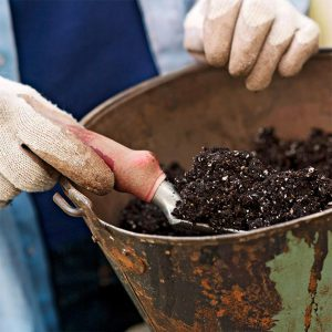 ریختن خاک گیاه