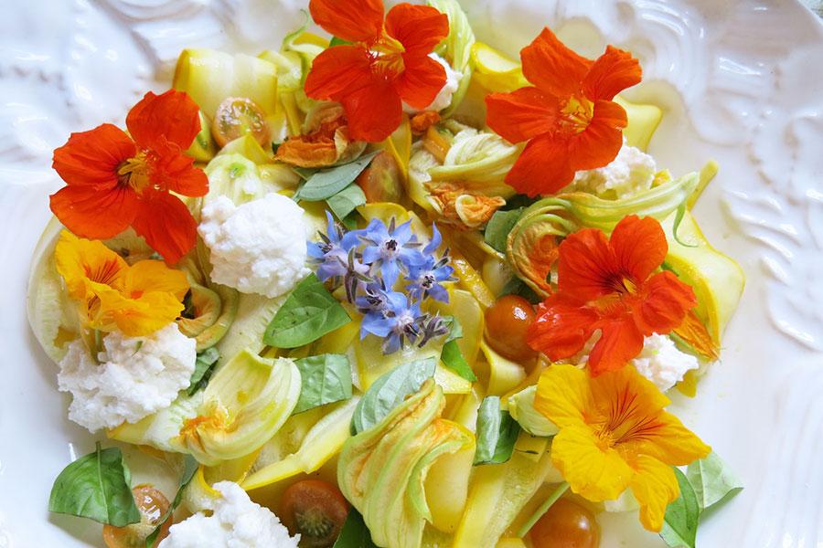 گل خوراکی گل گاو زبان