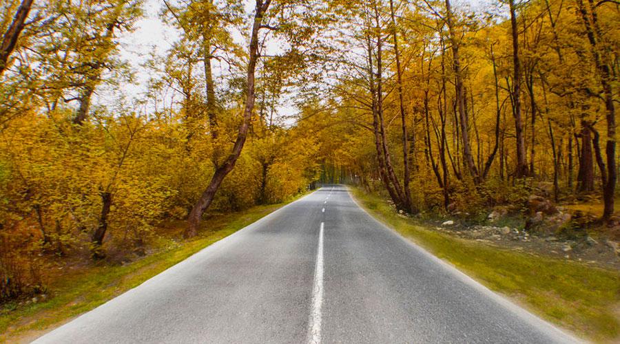 ایده رانندگی در جاده برای پاییز