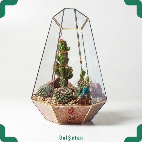 باغ شیشه ای نیمه باز