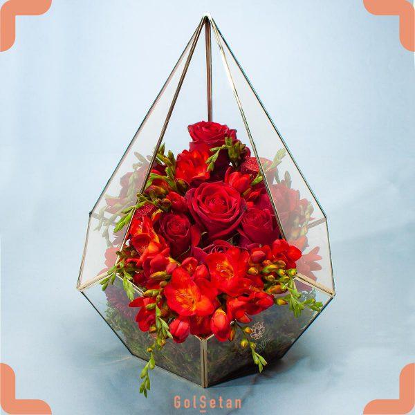 باکس گل فریزیا
