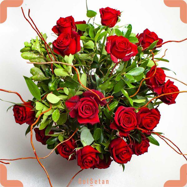 کاپ گل رز قرمز هلندی