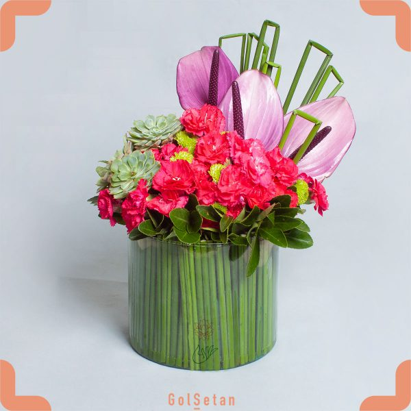 باکس گل میخک و آنتوریوم زیبا و جذاب