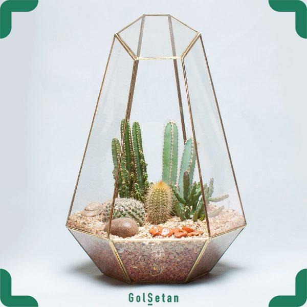 باغ شیشه ای نیمه باز و زیبا