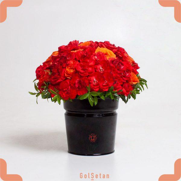 باکس گل رز و میخک قرمز و سرخابی