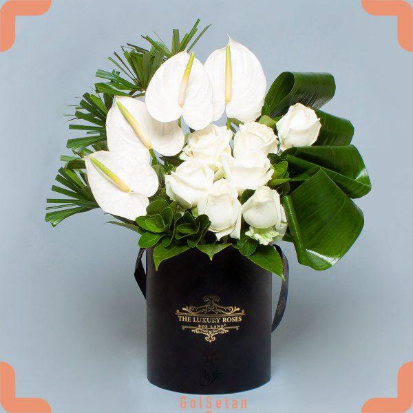 باکس گل رز و آنتوریوم سفید زیبا و شیک