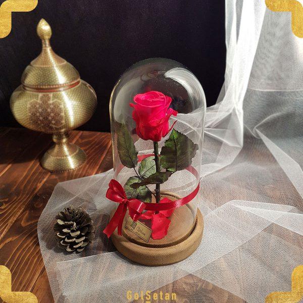 گل رز قرمز جاودان دیو و دلبر